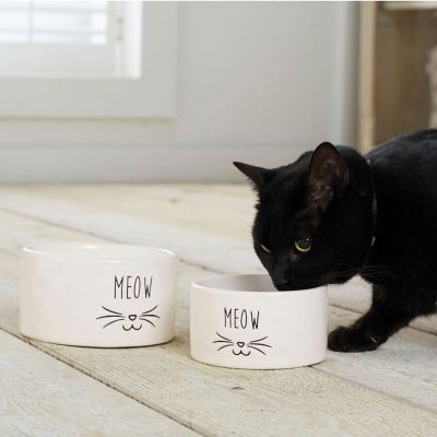 Meow Ceramic Pet Food Bowl Set